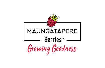 Maungatapere Berries